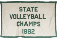 1982-Volleyball