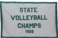 1988-Volleyball