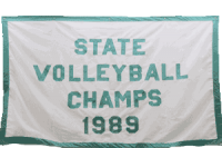 1989-Volleyball